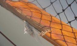 yacht fiberglass repair